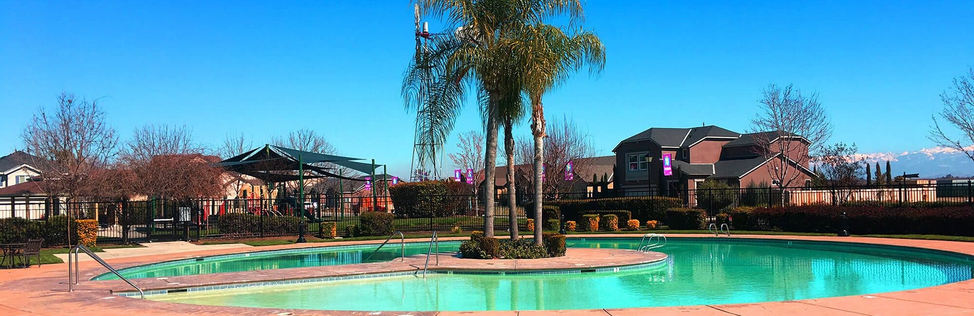 A pool with a palm tree in the middle of the town houses; Best Minds in Real Estate